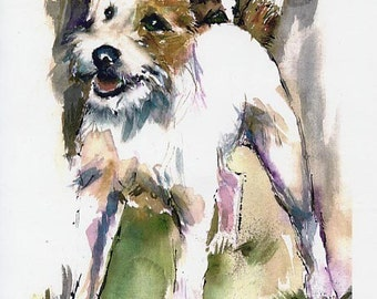 JACK RUSSELL dog Broken Coat,  Parson  Watercolor Fine Art dog Print SIGNED by the artist Carol Ratafia double matted to 16x20