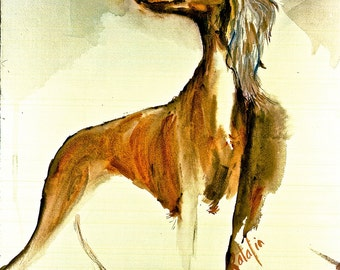 Saluki -The World's Oldest Breed- Watercolor Fine Art dog prints  SIGNED by the Atist Carol Ratafia DOUBLE MATTED to 16x20