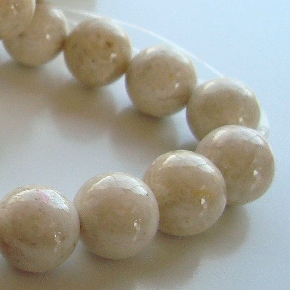 Fossil Beads 8mm Natural Stone White Round  Fossil Stones - 16 Pieces