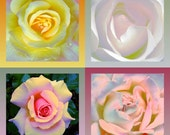 Rose Note Cards - Set of 4