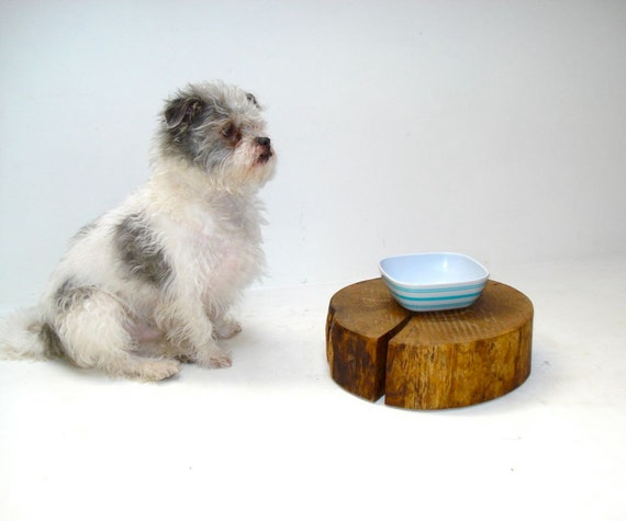 Pet Feeding Tree Stump Dog Cat Sipper