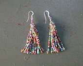 Let the Fun Begin Multi Colored Earrings