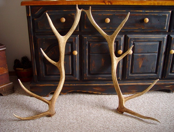 Matching Set of Colorado Elk Sheds - Taxidermy Supply - Rustic Supply