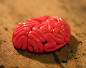 Brains Flatback, Pendant, Magnet or Pin