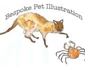 Bespoke pet illustration