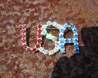 U S A   Red White and Blue brooch