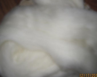 Ultra Soft Natural White Cheviot From Ashland Bay for Spinning Felting Hand Painting Dyeing Ecru
