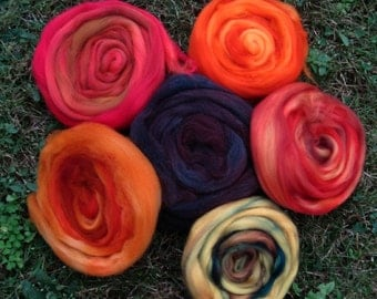 Fall Color Collection Superwash Longwool Top Spinners and Felters