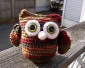 Mr. Autumn Owl needs a home