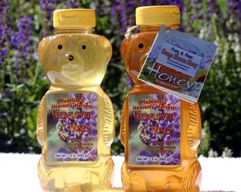 1.5lb squeeze bear of raw wildflower honey