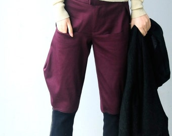 Breeches / boots pants