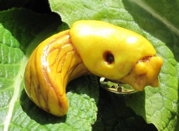 Small Banana Slug