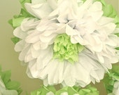 WHITEWASHED WONDERLAND 7 Giant Tissue Paper Pom Flowers, hang/wall flower, wedding, shower, nursery, party decor, Party Blooms by Whimsy Pie