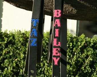 Dog Leash - Long Leather Dog Leash - 1 Inch Wide x 6 Foot Long - Personalized & Painted Text
