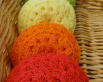 Set of 5- Classic 5 Nylon Net Scrubbies