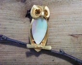 40s 50s Wise Old Owl Pin, Goldtone with MOP
