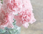 Pink Carnations In Mason Jar.   8x12 Fine Art Nature Photography Print.  Shabby Chic Flowers Spring Decor.
