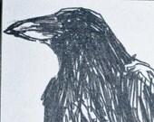 Raven Art Drawing