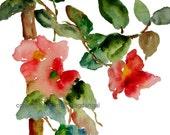 Flowers on Vine 2 Watercolor, Print 8x10, Watercolor Flowers - pineapplebaystudio
