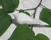 Peace Bird Bobbies