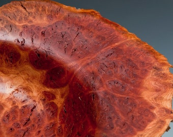Red Mallee Burl Winged Bowl
