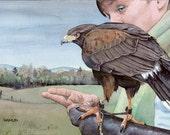 Harris's Hawk & Handler - Open edition print of an original watercolor (fits 11x14 frame)