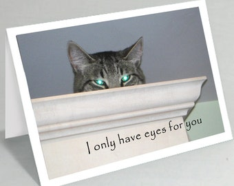 I only have eyes for you cat greeting card - Valentine's card Valentines card - Love notes - Cat eyes - Cute cat card (Blank inside)