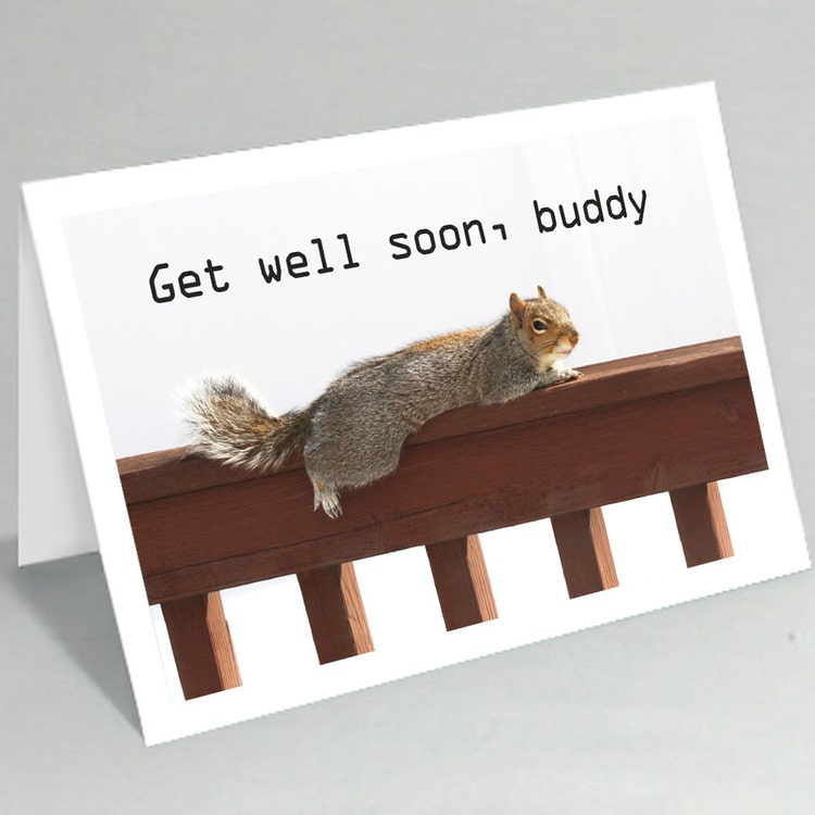 Get Well Soon Card Feel Better Soon Card Squirrel By