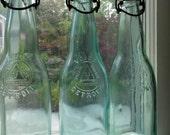 Vintage Detroit Voigt Bottles
