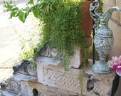 Architectural Salvage Stone Corbel Sconce Corithian Leaf Style