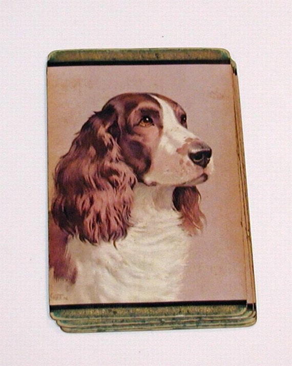 Vintage Lot of 10 Playing Cards -  Spaniel Dog Brown and White