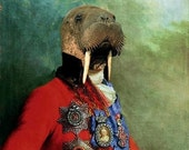 Sir Odobenus Rosmarus Portrait - 18 X 24 Fine Art Print