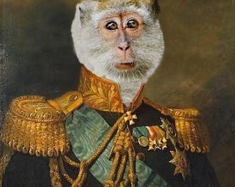 Prince Primate II - 13 X 19 Fine Art Print