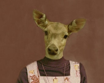 Fawn, School Portrait - 8 X 10 Art Print