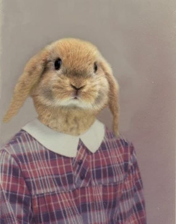 Loppy Sue, School Portrait - 5 X 7  Fine Art Print