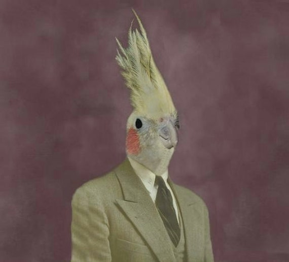 Mr. Gary Tiel - 8 X 10 Fine Art Print