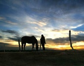 Horse and girl - Illinois sunset - girl with horse - horse photography ACEO print