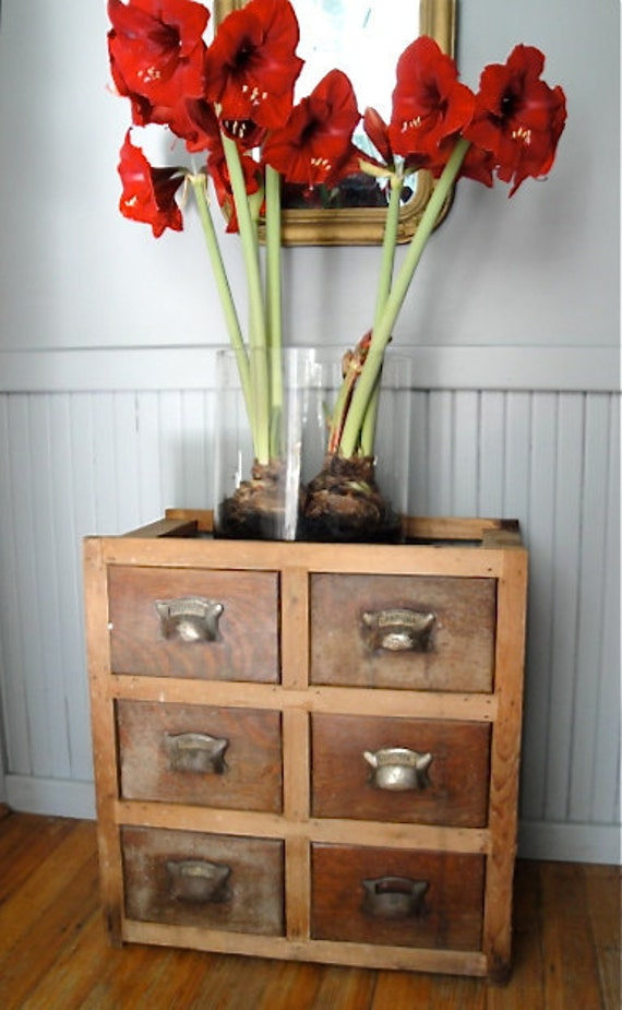 RESERVED LISTING Antique apothecary chest