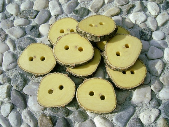"""10 Kozika Tree Branch Buttons, Around 3/4"""" inches in diameter"""