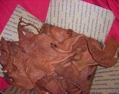 Large Flat Rate Box of Brown Buffalo Scraps 8 Pounds