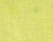 Eva decadent lime green grunge solid for Moda by Basic Grey