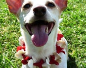 Hawaiian Plumeria Pet Lei (Size Small) - red and white
