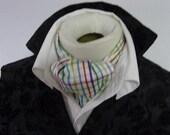 DAY Cravat Victorian Ascot Tie Cravat - Dupioni SILK Rainbow stripe