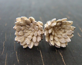 Classic Sedum Rosette Posts -- Nature Cast -- Botanical Earrings -- Ready to Ship