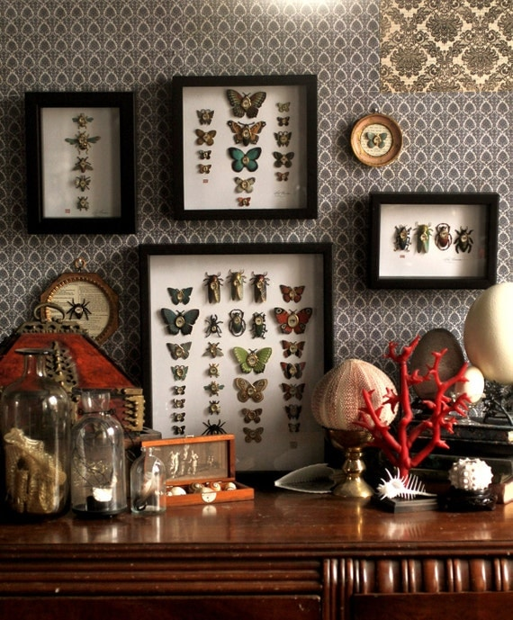 Cabinet of Curiosities Specimen no. 35 -The Field Moth Eye Flies Collection - original 3D insect paintings by Mab Graves