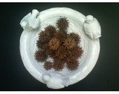 Sweet Gum Seed Pods, Autumn Fall Natural Elements