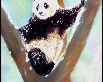 Panda on the High Up, 11 x 14