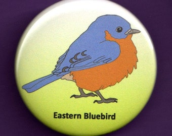 Eastern Bluebird Button 1.75 inch Bird pin bluebird badge tiny bird wearable art bluebird artwork