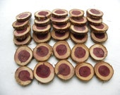Cedar wood rounds-12 Woodland Wedding place markers-Table Number markers-Wood slabs