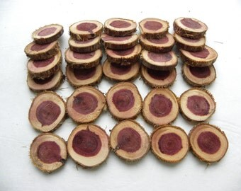 "Cedar wood rounds-12 Woodland Wedding place markers-Table Number markers-Wood slabs about 3"" to 4"""